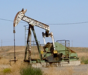 Zebr a Oil
